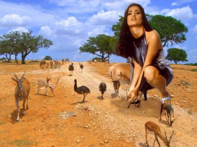 big art of Salma Hayek(Safari)