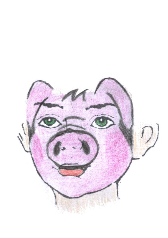 face painting examples old macdonald s farm pig
